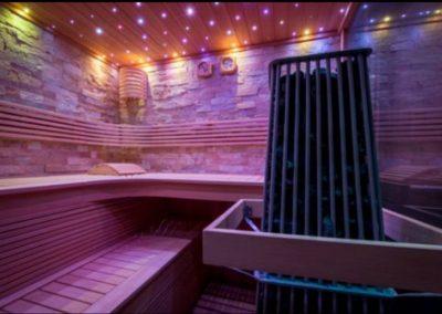 Acqua Detente Saunas 202